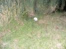 2011-07-30_21-59-52-1307_orig