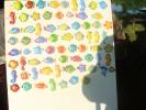 2011-05-29_07-02-39-1036_orig
