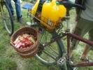 2011-05-29_09-05-52-1009_orig
