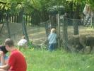 2011-05-29_09-41-42-994_orig