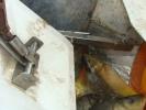 2011-03-18_12-24-46-587_orig