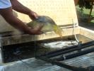 2011-05-27_11-48-51-848_orig