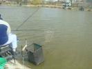 2012-03-31_10-48-22-2113_orig