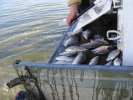 2012-03-30_16-29-14-2051_orig