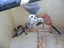 2012-03-30_16-29-26-2050_orig