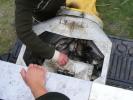 2012-04-11_16-15-21-2152_orig