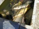 2012-04-27_12-46-54-2275_orig
