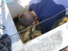 2012-04-27_12-48-38-2268_orig