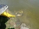 2012-04-27_12-50-17-2264_orig