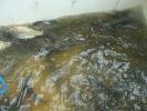 2012-05-15_10-44-21-2406_orig
