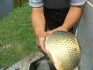 2012-05-18_11-14-22-2415_orig