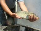 2012-05-18_11-14-44-2413_orig
