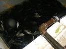2012-11-05_17-27-59-3331_orig
